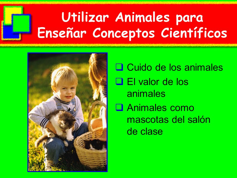 Care of Animals Humane care and treatment Provide the basic needs