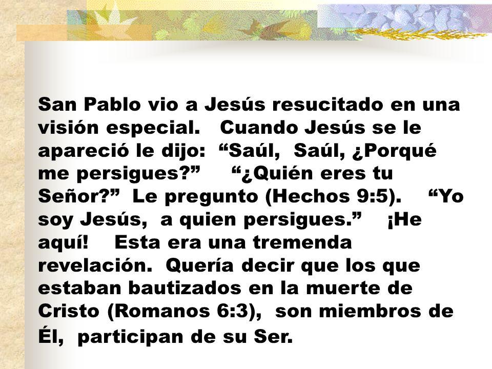 San Pablo vio a Jesús resucitado en una visión especial. Cuando Jesús se le apareció le dijo: Saúl, Saúl, ¿Porqué me persigues? ¿Quién eres tu Señor?