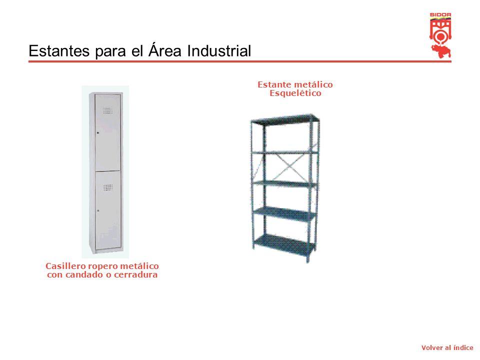 7 Estantes para el Área Industrial Casillero ropero metálico con candado o cerradura Estante metálico Esquelético Volver al índice