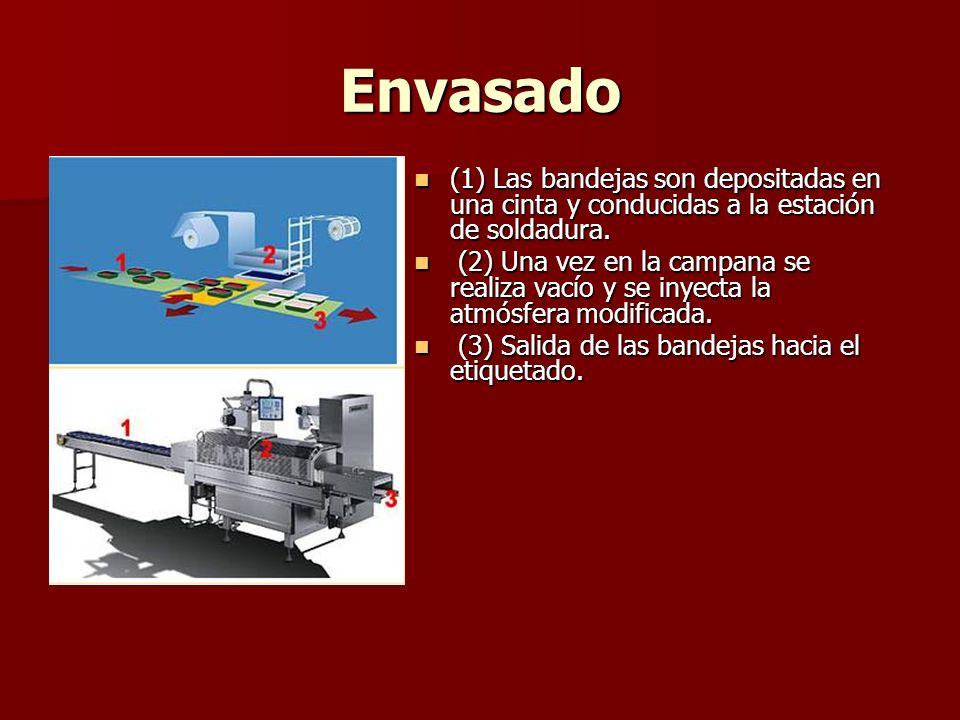 Envasado (1) Las bandejas son depositadas en una cinta y conducidas a la estación de soldadura. (1) Las bandejas son depositadas en una cinta y conduc