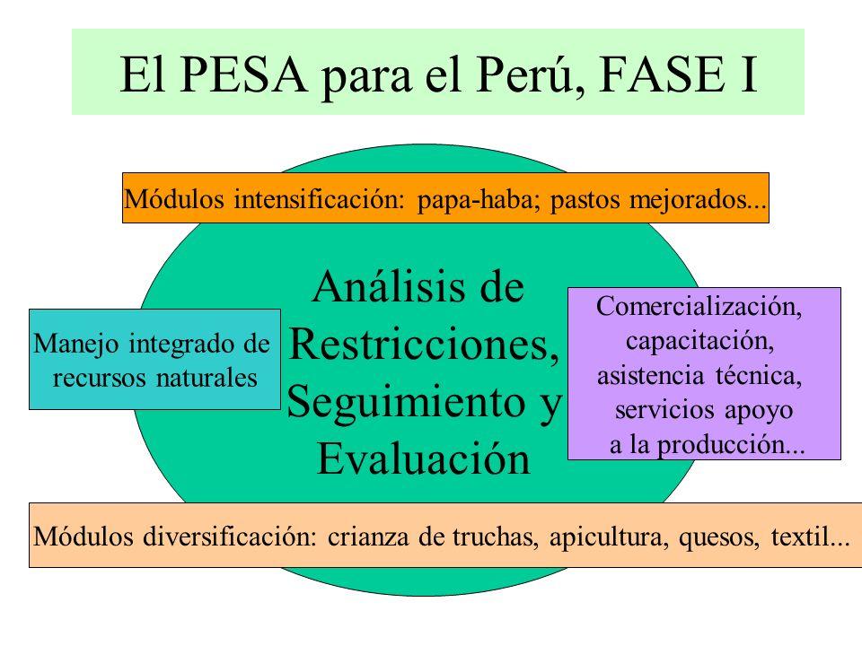 El PESA para el Perú, FASE I Análisis de Restricciones, Seguimiento y Evaluación Módulos intensificación: papa-haba; pastos mejorados...