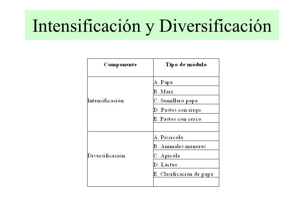 Intensificación y Diversificación