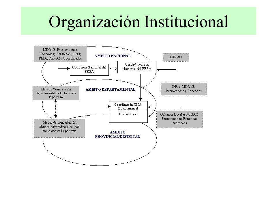 Organización Institucional