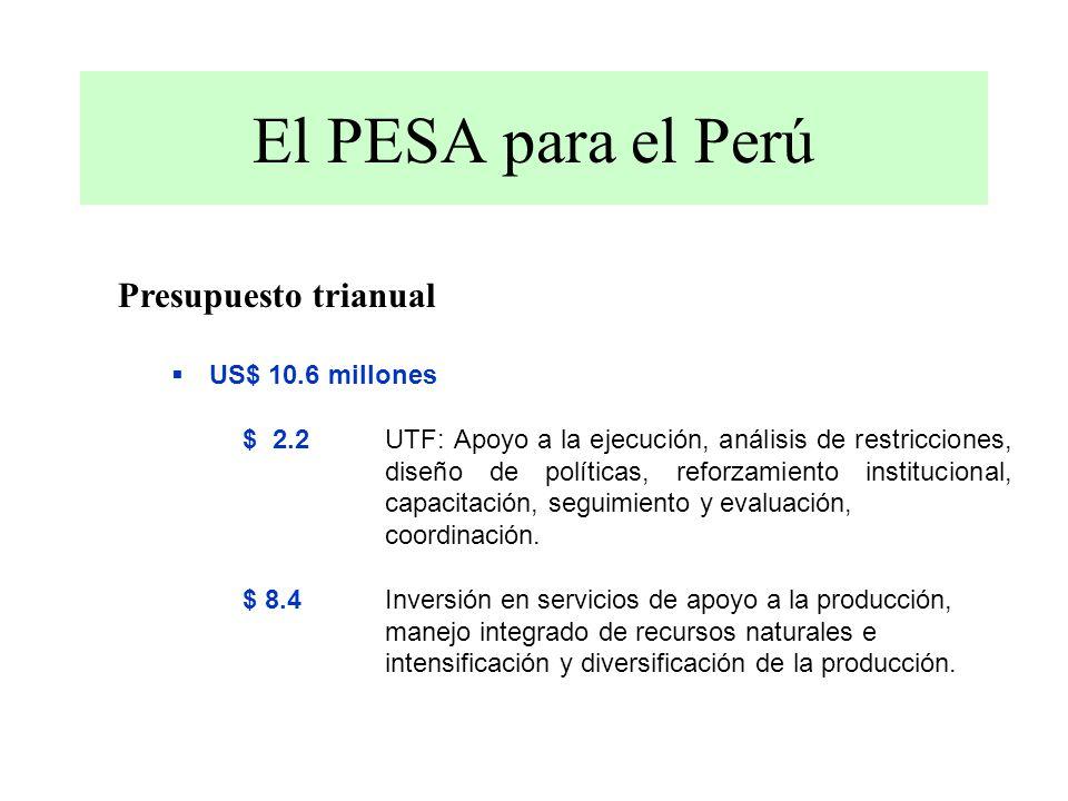 El PESA para el Perú Presupuesto trianual US$ 10.6 millones $ 2.2 UTF: Apoyo a la ejecución, análisis de restricciones, diseño de políticas, reforzamiento institucional, capacitación, seguimiento y evaluación, coordinación.