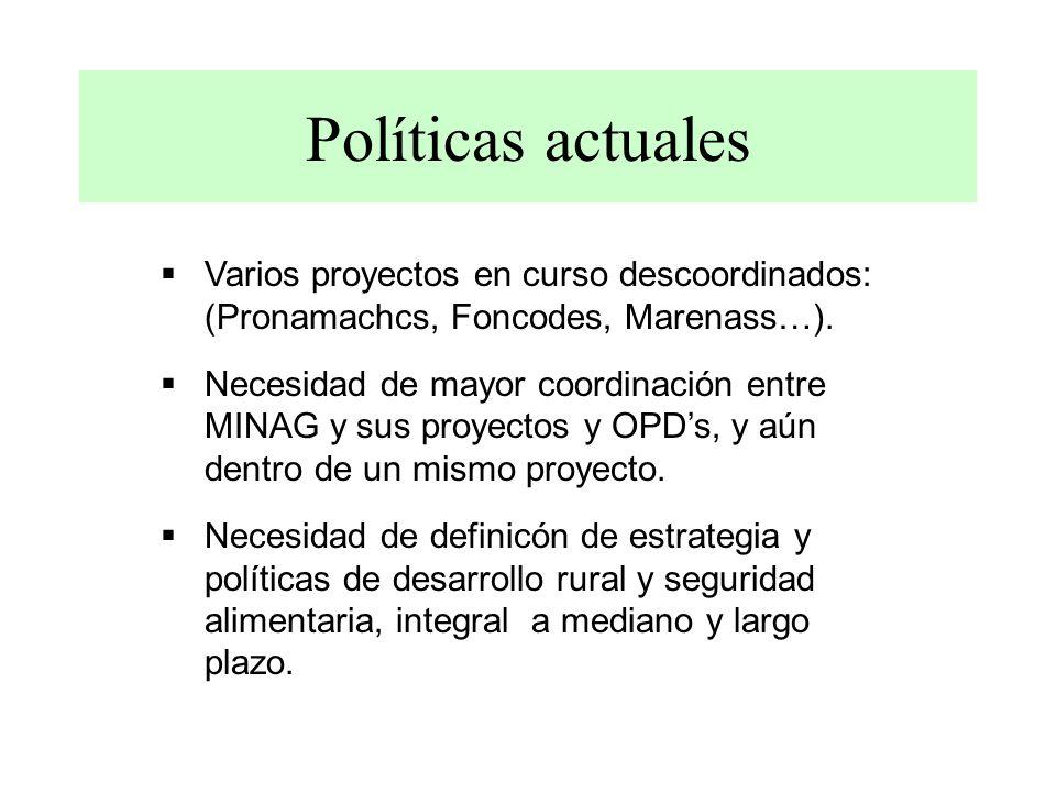 Políticas actuales Varios proyectos en curso descoordinados: (Pronamachcs, Foncodes, Marenass…). Necesidad de mayor coordinación entre MINAG y sus pro