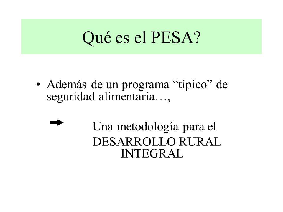 Qué es el PESA.