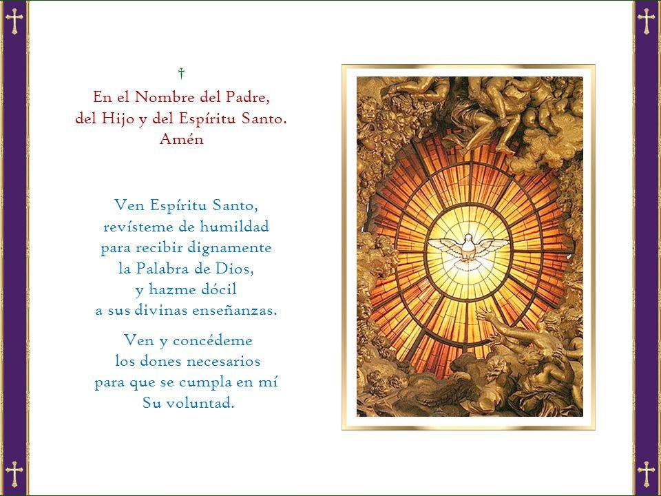 En el Nombre del Padre, del Hijo y del Espíritu Santo.