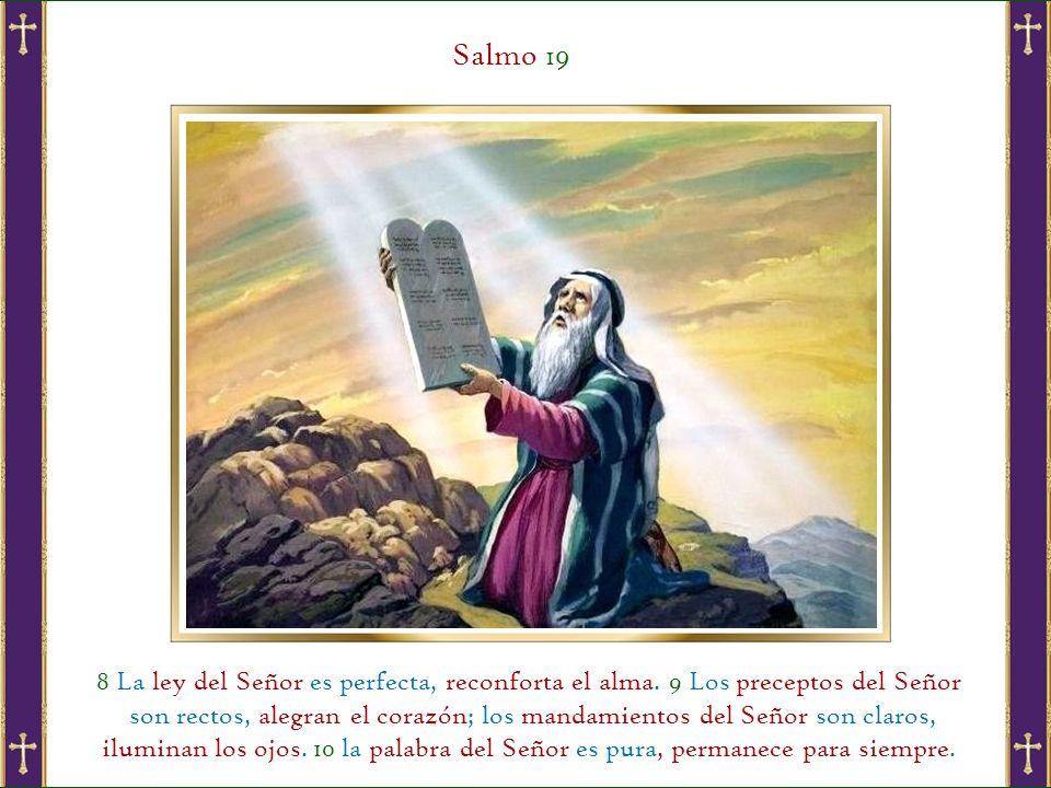 Salmo 19 8 La ley del Señor es perfecta, reconforta el alma.