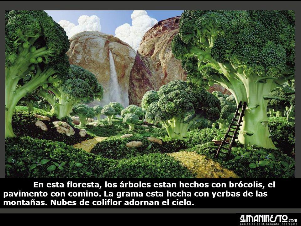 En esta floresta, los árboles estan hechos con brócolis, el pavimento con comino.