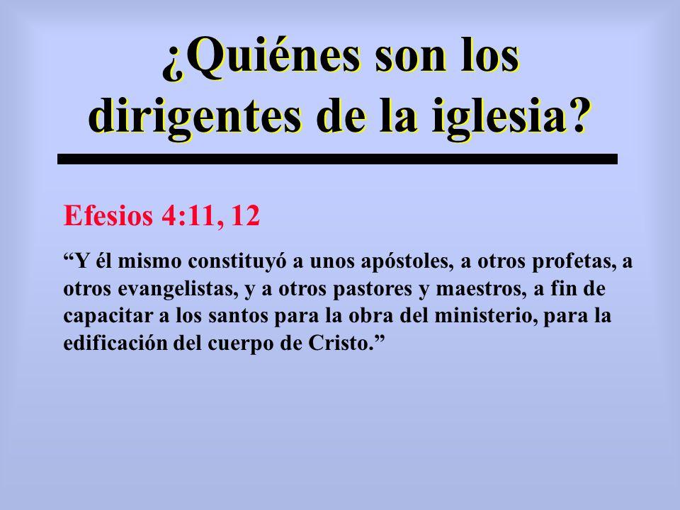 ¿Quiénes son los dirigentes de la iglesia? Efesios 4:11, 12 Y él mismo constituyó a unos apóstoles, a otros profetas, a otros evangelistas, y a otros