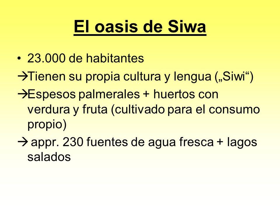 El oasis de Siwa 23.000 de habitantes Tienen su propia cultura y lengua (Siwi) Espesos palmerales + huertos con verdura y fruta (cultivado para el consumo propio) appr.