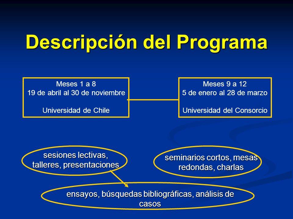 Descripción del Programa Meses 1 a 8 19 de abril al 30 de noviembre Universidad de Chile Meses 9 a 12 5 de enero al 28 de marzo Universidad del Consor