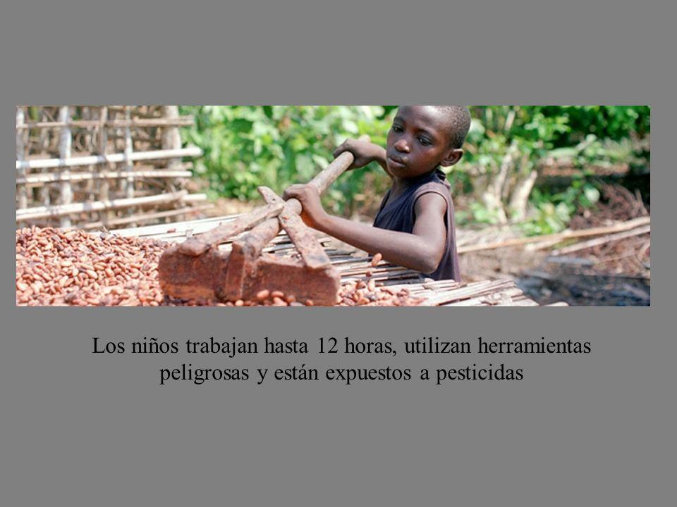 Los niños pertenecen a las áreas más pobres de Malí, son los hijos e hijas de vendedores callejeros o habitantes de los barrios marginales, cuyos padr