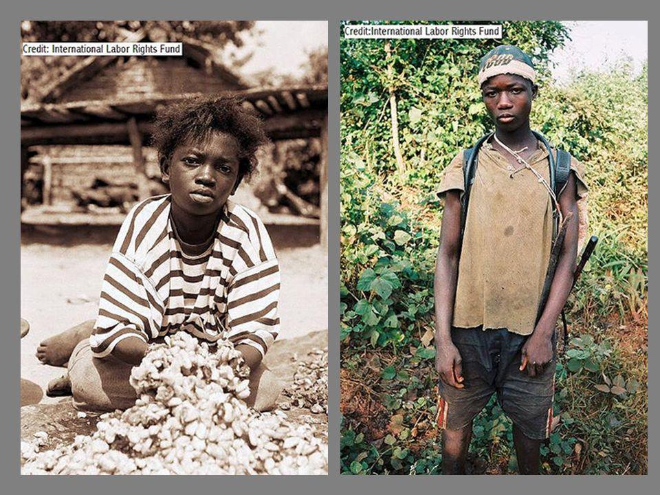 Los niños, algunos de ellos menores de 11 años de edad, permanecen como prisioneros en las plantaciones y son golpeados si tratan de escapar. La gran