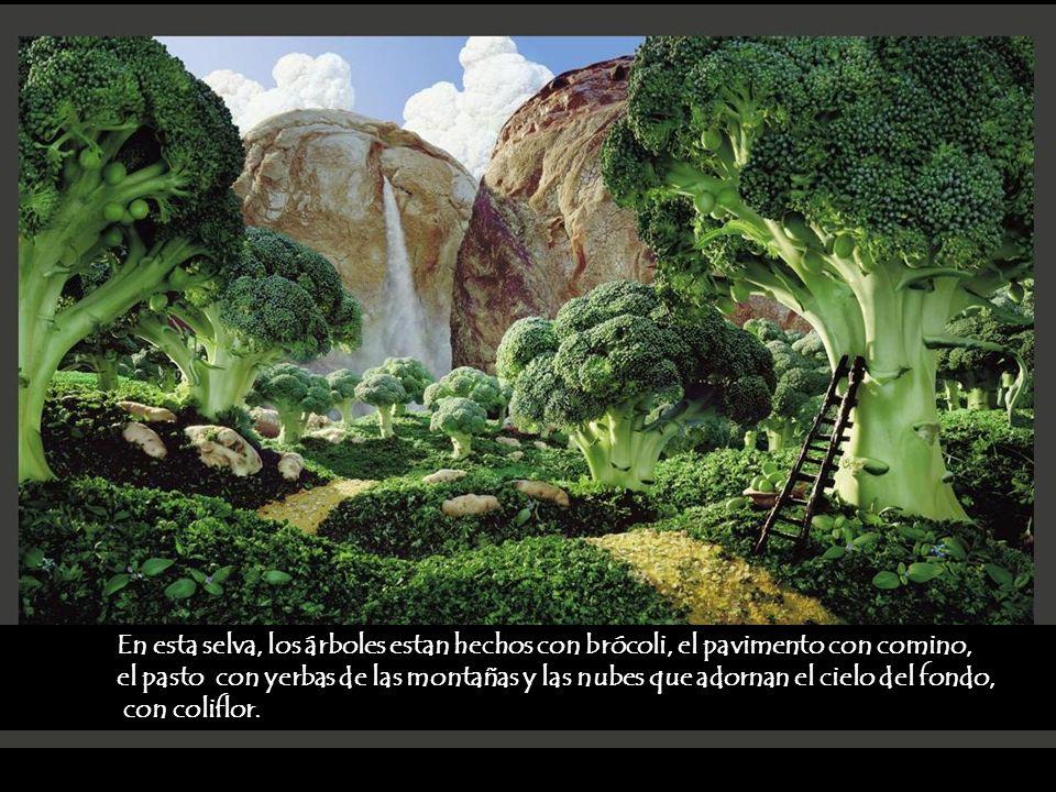 En esta selva, los árboles estan hechos con brócoli, el pavimento con comino, el pasto con yerbas de las montañas y las nubes que adornan el cielo del