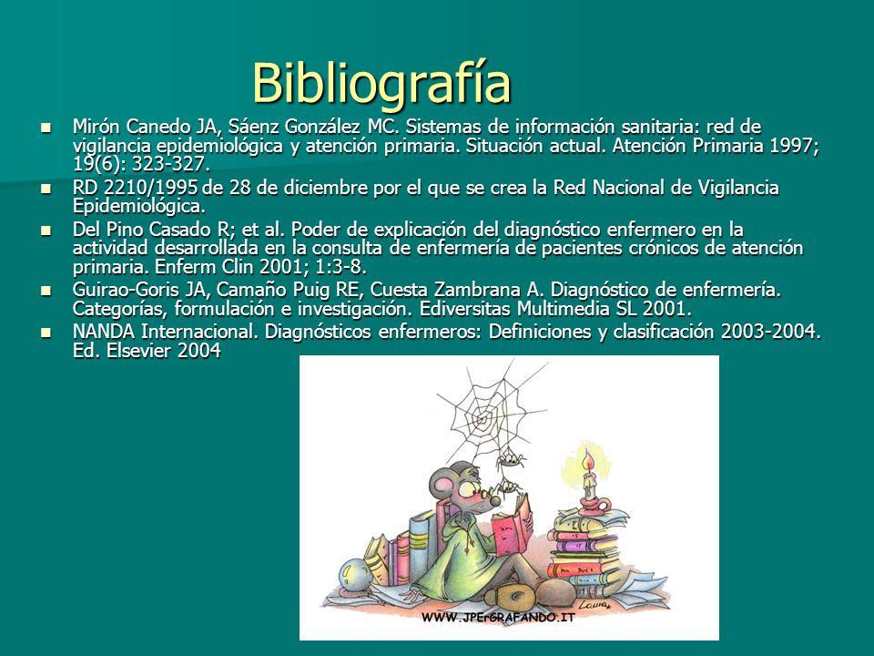 X Encuentro Internacional de Investigación en Enfermería. INVESTEN-ISCIII. Albacete 2006. Bibliografía Mirón Canedo JA, Sáenz González MC. Sistemas de