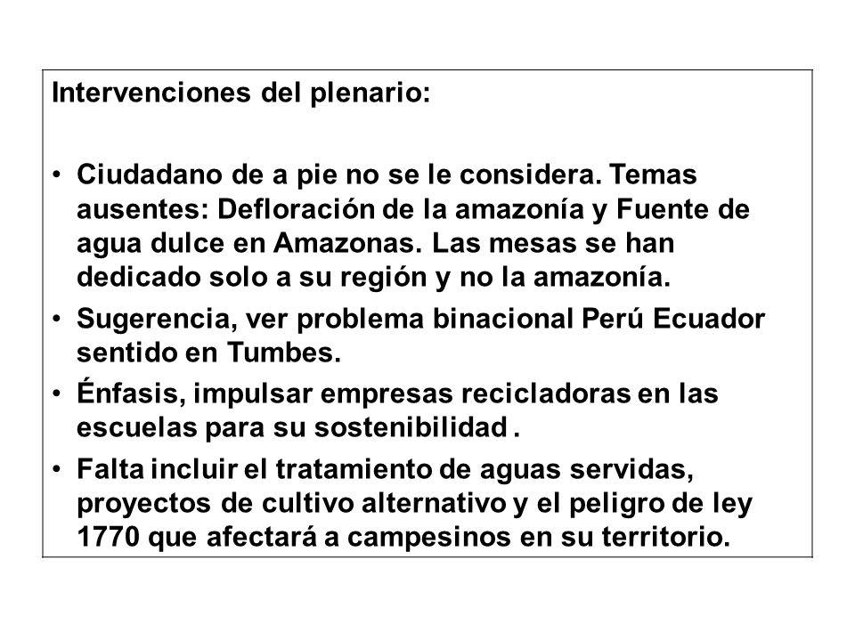 Intervenciones del plenario: Ciudadano de a pie no se le considera. Temas ausentes: Defloración de la amazonía y Fuente de agua dulce en Amazonas. Las