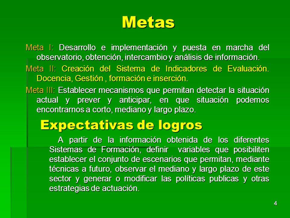 Metas Meta I: Desarrollo e implementación y puesta en marcha del observatorio, obtención, intercambio y análisis de información. Meta II: Creación del