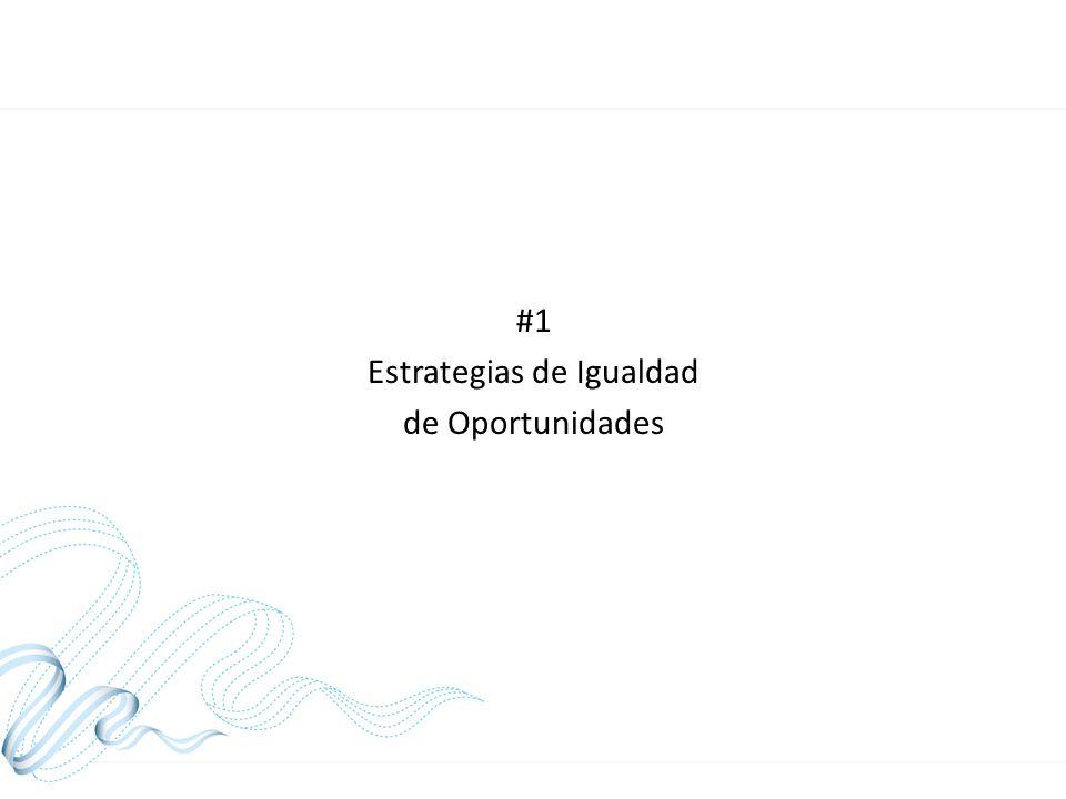 #1 Estrategias de Igualdad de Oportunidades