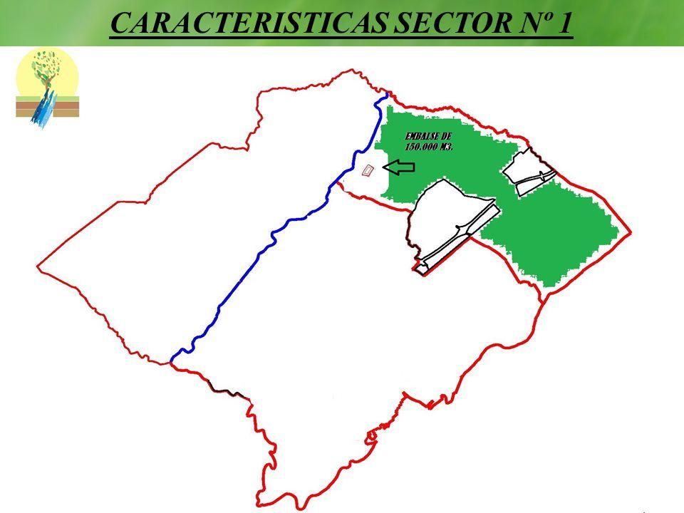 CARACTERISTICAS SECTOR Nº 1