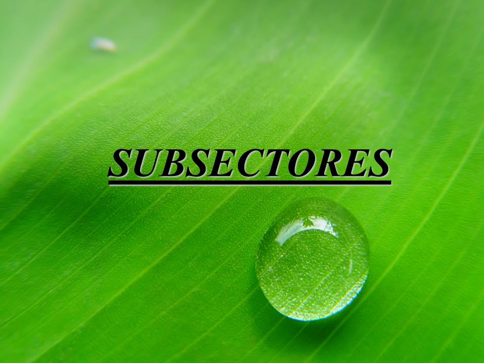 SUBSECTORES
