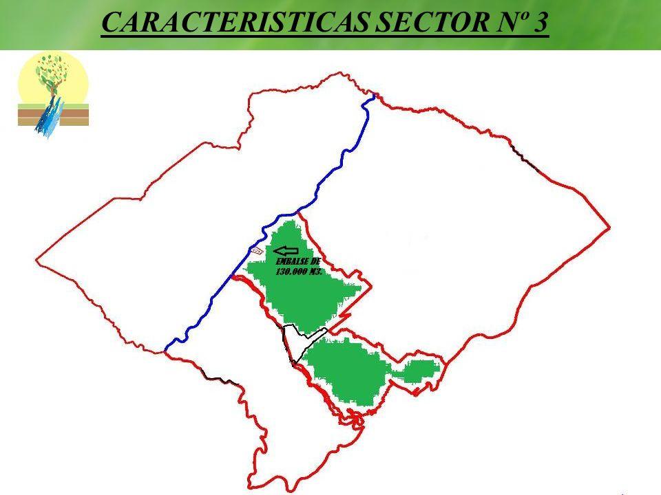 CARACTERISTICAS SECTOR Nº 3