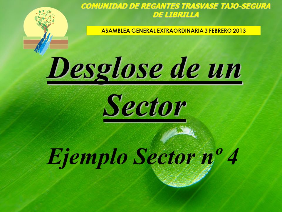 Desglose de un Sector COMUNIDAD DE REGANTES TRASVASE TAJO-SEGURA DE LIBRILLA ASAMBLEA GENERAL EXTRAORDINARIA 3 FEBRERO 2013 Ejemplo Sector nº 4