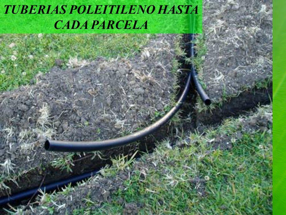 TUBERIAS POLEITILENO HASTA CADA PARCELA
