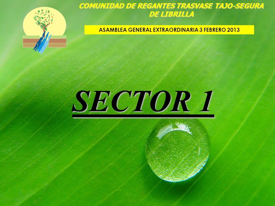 SECTOR 1 COMUNIDAD DE REGANTES TRASVASE TAJO-SEGURA DE LIBRILLA ASAMBLEA GENERAL EXTRAORDINARIA 3 FEBRERO 2013