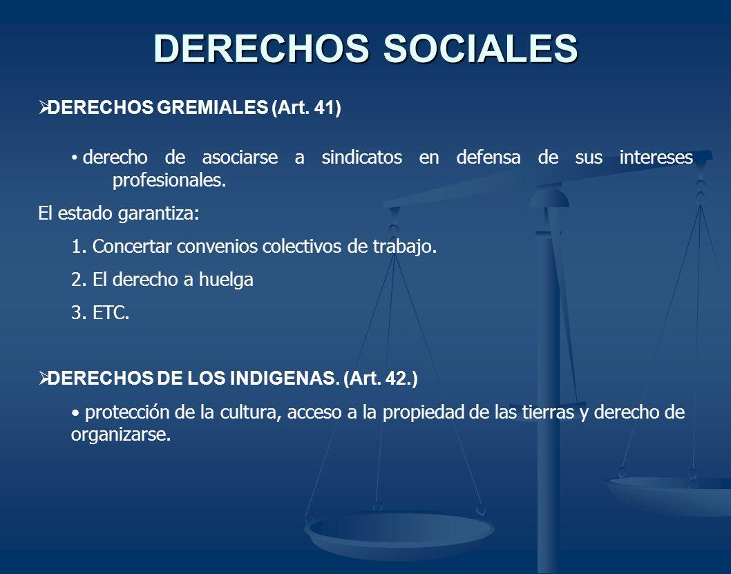 DERECHOS SOCIALES DERECHOS GREMIALES (Art. 41) derecho de asociarse a sindicatos en defensa de sus intereses profesionales. El estado garantiza: 1. Co