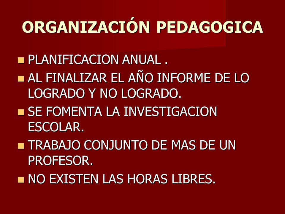 ORGANIZACIÓN PEDAGOGICA PLANIFICACION ANUAL.PLANIFICACION ANUAL.