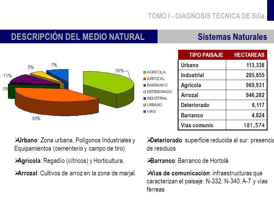 TOMO I - DIAGNOSIS TÉCNICA DE Silla Sistemas Naturales DESCRIPCIÓN DEL MEDIO NATURAL TIPO PAISAJEHECTAREAS Urbano113,338 Industrial285,855 Agricola969