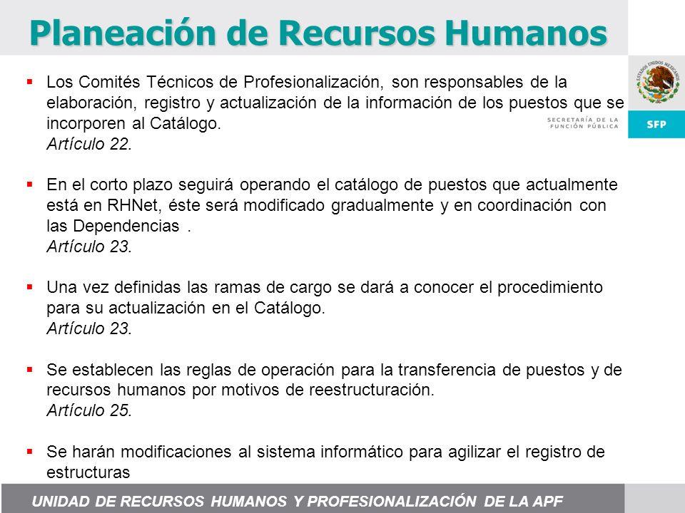 Los Comités Técnicos de Profesionalización, son responsables de la elaboración, registro y actualización de la información de los puestos que se incorporen al Catálogo.