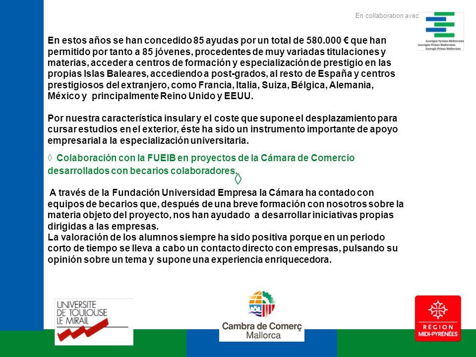 Ejemplos de estos proyectos: campaña informativa del euro en las empresas, campaña informativa sobre el efecto 2000, información sobre normativas medioambientales, realización de encuestas de opinión, entre otros.