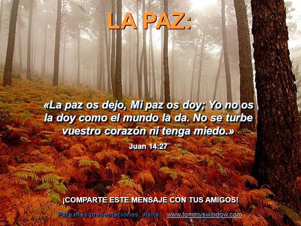 La felicidad no se encuentra dentro, ni fuera de nosotros, sino que es fruto de nuestra comunión con Dios. -- Blaise Pascal Estar felices con lo que t
