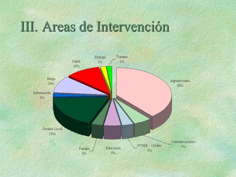 III. Areas de Intervención
