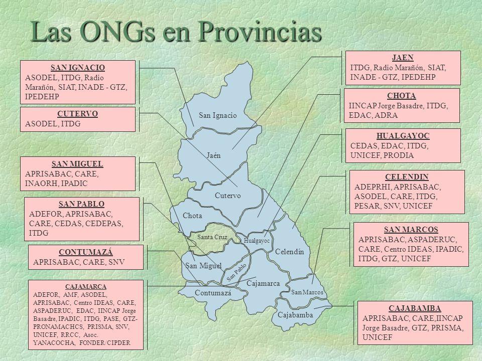 Las ONGs en Provincias San Ignacio Jaén Cutervo Chota Santa Cruz Hualgayoc San Miguel San Pablo Contumazá Cajamarca Celendín Cajabamba San Marcos SAN