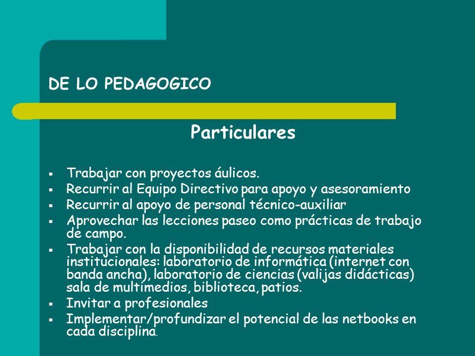 DE LO PEDAGOGICO Particulares Trabajar con proyectos áulicos. Recurrir al Equipo Directivo para apoyo y asesoramiento Recurrir al apoyo de personal té