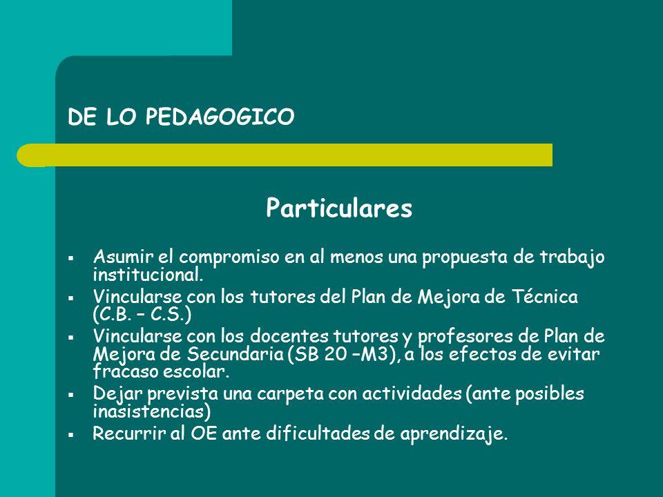 DE LO PEDAGOGICO Particulares Asumir el compromiso en al menos una propuesta de trabajo institucional. Vincularse con los tutores del Plan de Mejora d