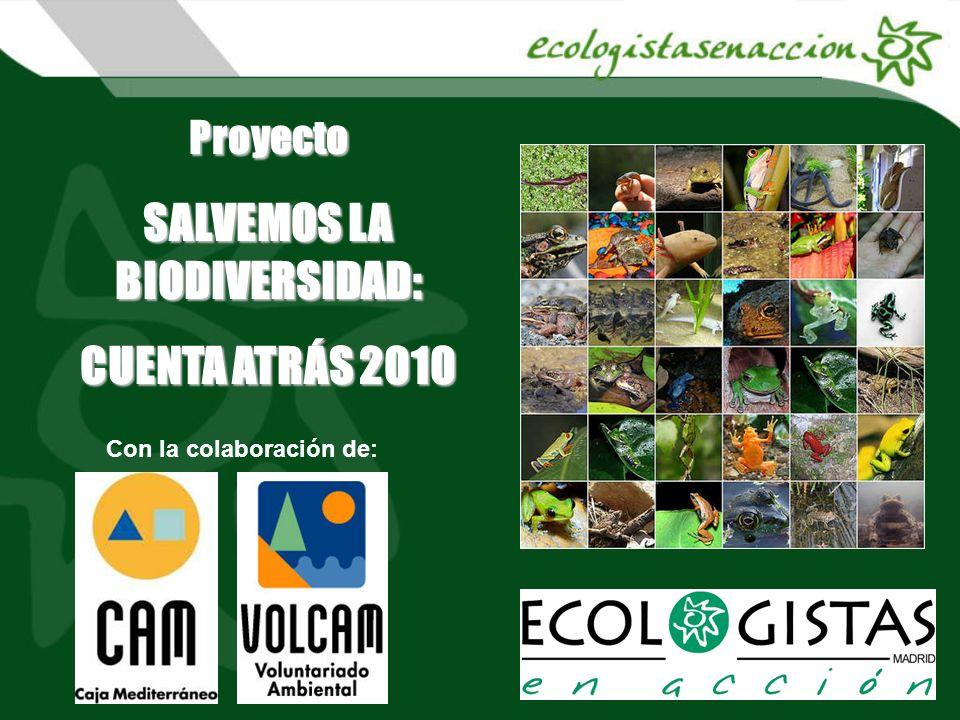 Proyecto SALVEMOS LA BIODIVERSIDAD: CUENTA ATRÁS 2010 Con la colaboración de: