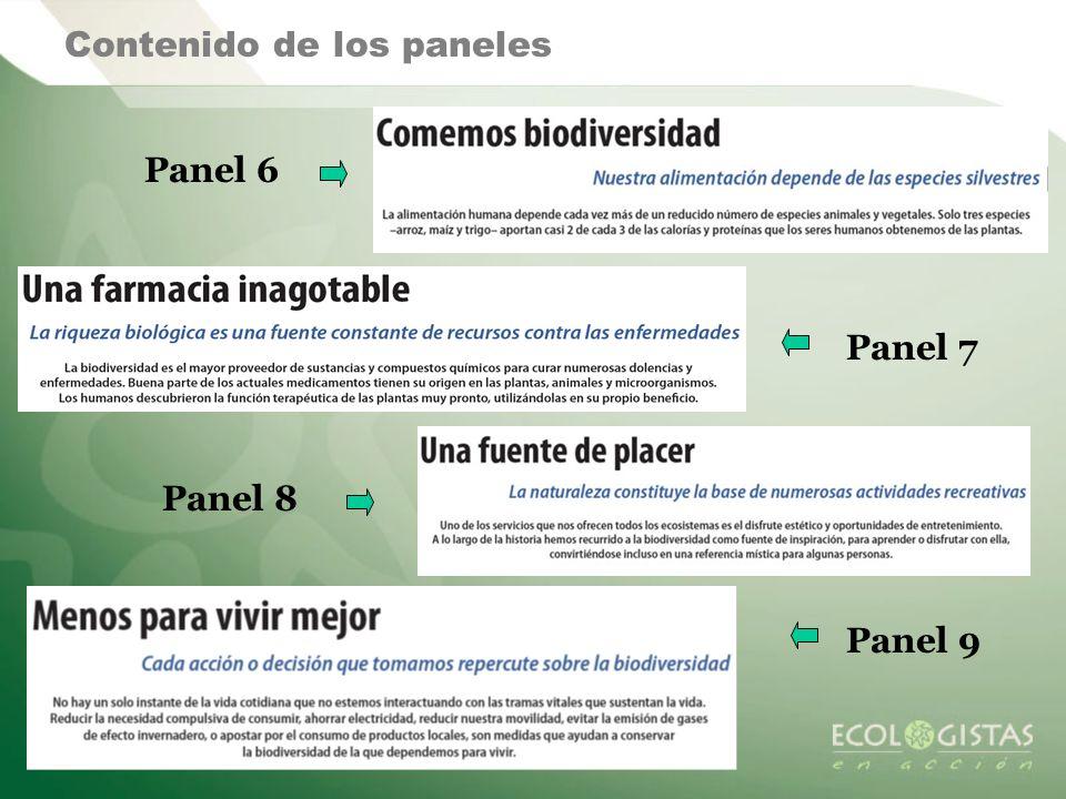 Contenido de los paneles Panel 6 Panel 7 Panel 8 Panel 9