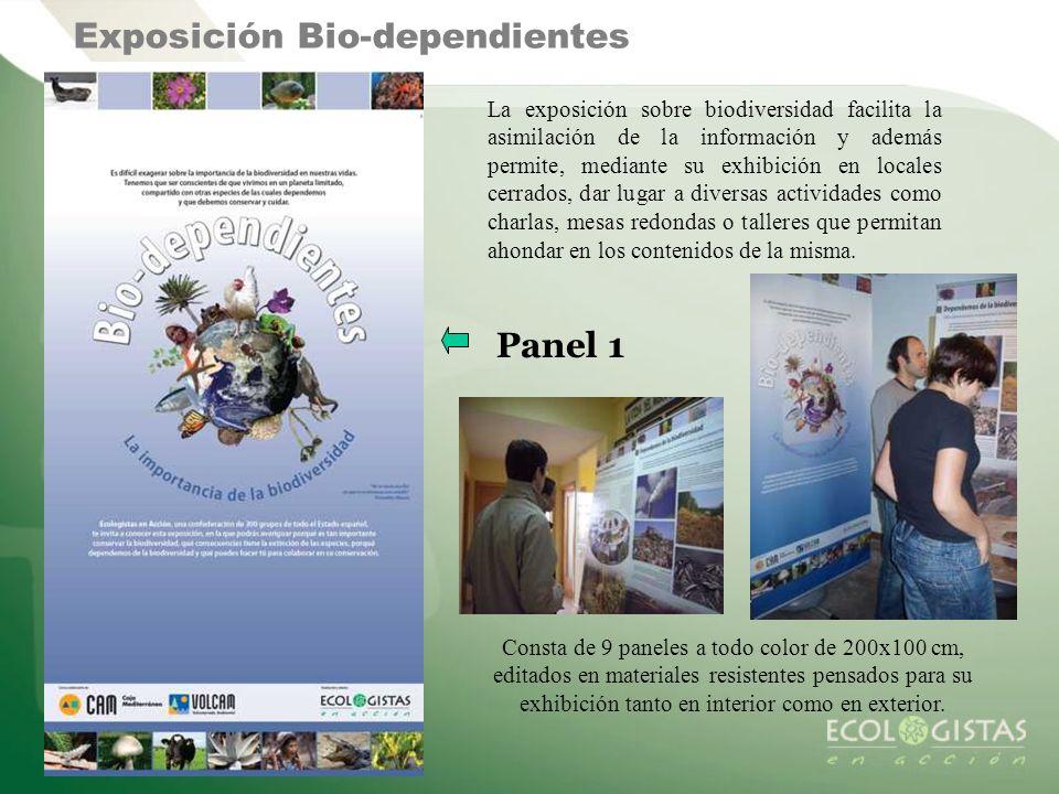 Exposición Bio-dependientes La exposición sobre biodiversidad facilita la asimilación de la información y además permite, mediante su exhibición en lo