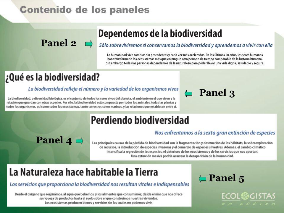 Contenido de los paneles Panel 2 Panel 3 Panel 4 Panel 5