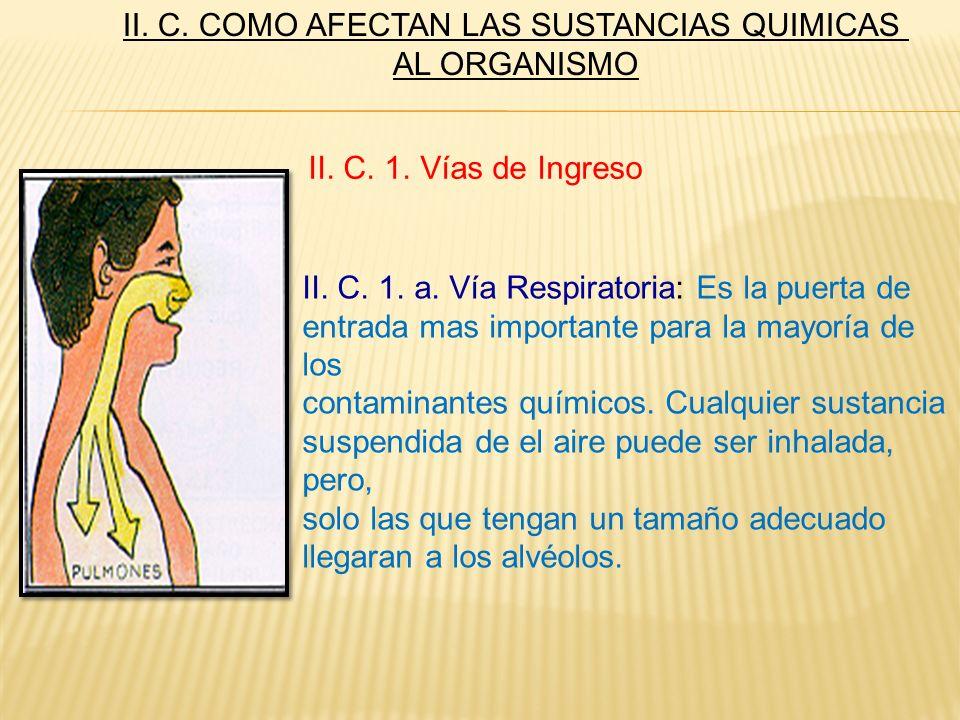 II. C. 1. a. Vía Respiratoria: Es la puerta de entrada mas importante para la mayoría de los contaminantes químicos. Cualquier sustancia suspendida de