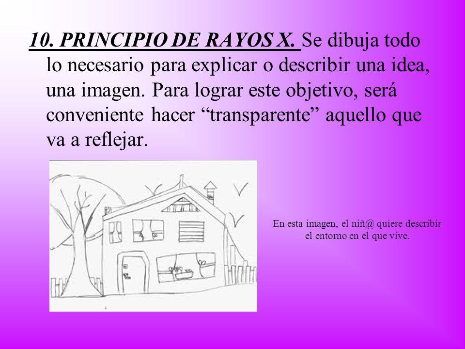 10. PRINCIPIO DE RAYOS X. Se dibuja todo lo necesario para explicar o describir una idea, una imagen. Para lograr este objetivo, será conveniente hace