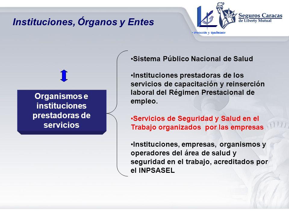 Organismos e instancias de consulta y participación Consejo de Seguridad y Salud en el Trabajo. Comités de Seguridad y Salud Laboral de las empresas.
