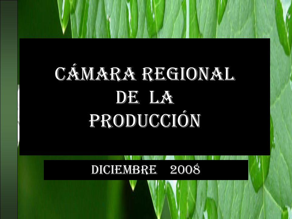 Cámara regional de la producción DICIEMBRE 2008