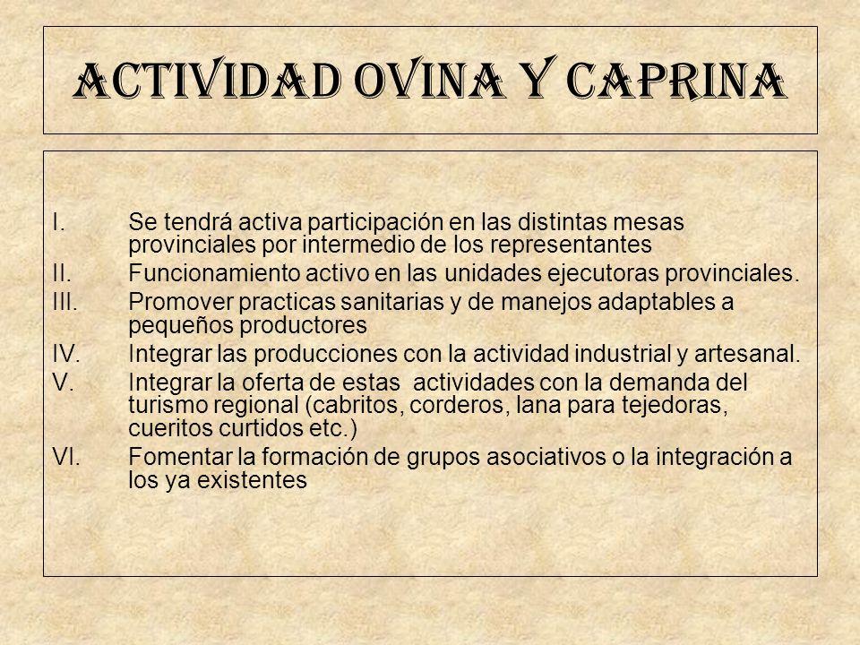 ACTIVIDAD OVINA Y CAPRINA I.Se tendrá activa participación en las distintas mesas provinciales por intermedio de los representantes II.Funcionamiento