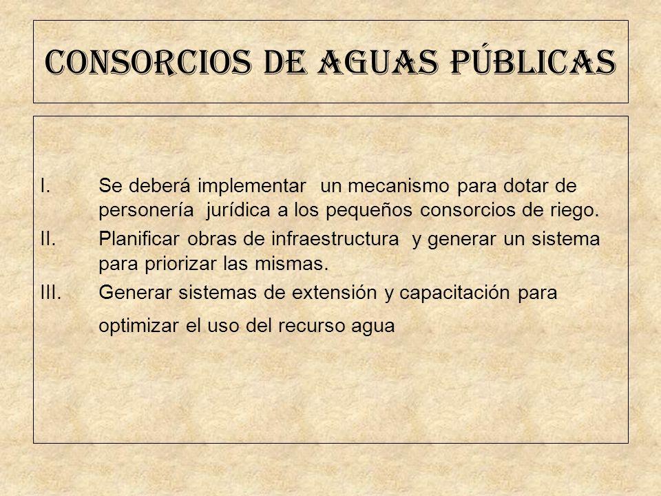 CONSORCIOS DE AGUAS PÚBLICAS I.Se deberá implementar un mecanismo para dotar de personería jurídica a los pequeños consorcios de riego. II.Planificar