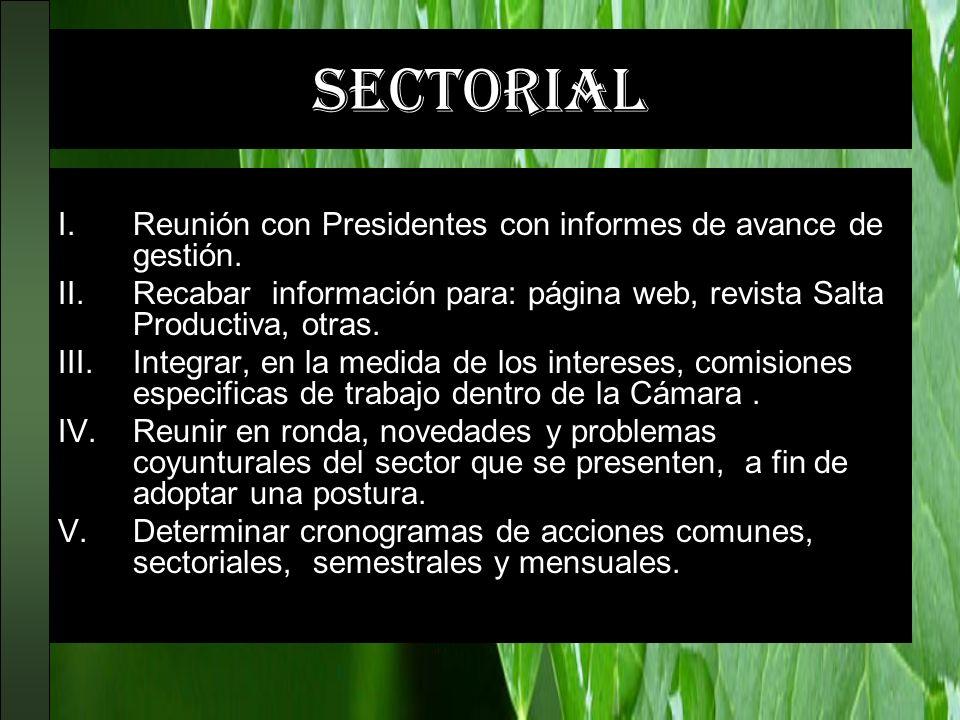 sectorial I.Reunión con Presidentes con informes de avance de gestión. II.Recabar información para: página web, revista Salta Productiva, otras. III.I